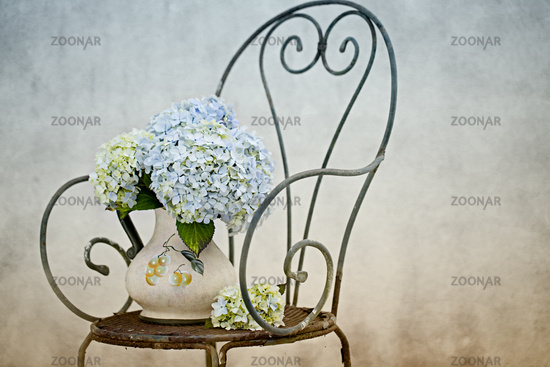 STill-Life with Hortensia Flowers