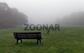 Novembernebel im Park