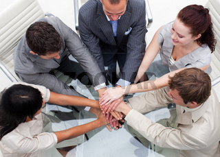 Close-up of business team with hands together. Teamwork