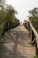 woman walking along a long wooden boardwalk