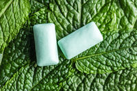 Mint chewing gum pads on green mint leaves.