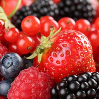 Erdbeeren, Blaubeeren, Himbeeren, Johannisbeeren und Brombeeren