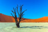 Grand trip to Namib Naukluft desert
