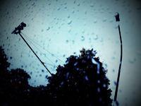 Raindrops on window pane, dark, tree traffic light