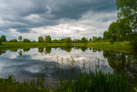 Summer field landscape-gray thick rain clouds and trees are reflected in a mirror pond overgrown with river grass