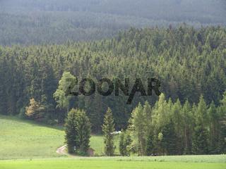 Landschaft am Tillen bei Neualbenreuth