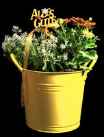 Present with flowers in a yellow bucket