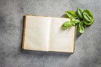 Blank recipe book. Cookbook and green basil leaves.