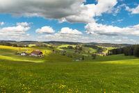 Farm houses and flower meadow in Black Forest, Jostal near Breitnau, Germany