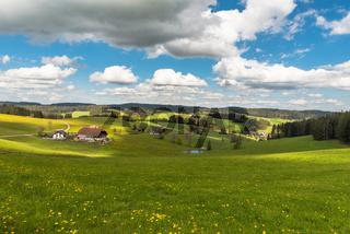 Bauernhof und Blumenwiese im Schwarzwald, Jostal bei Breitnau, Baden-Württemberg, Deutschland