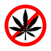 No drugs red forbidden sign with marijuana leaf, cannabis detailed black icon isolated on the white background