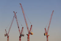 Four cranes in the evening light on a large construction site in the west of the Netherlands