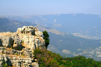 Top of the mountain with green forest above