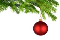 Red Christmas bauble hanging from fresh green twig