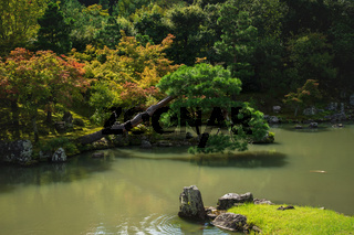 Colorful autumn trees along pond at traditional Japanese zen garden Sogenchi at Tenryu-ji Temple in Kyoto, Japan