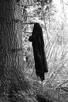 Black coat hanging on tree, black and white