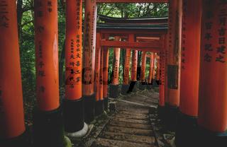 Stairs through tunnel of orange torii gates at Fishimi Inari Taisha shrine in Kyoto, Japan
