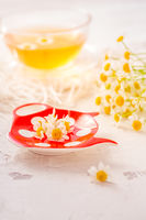 Chamomile herbal tea (Matricaria chamomilla) on kitchen table