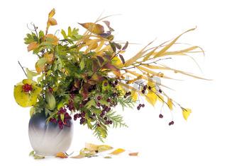 autumn  bouquet in jug