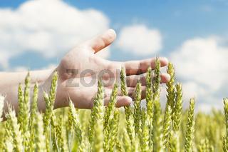 Hand near ears
