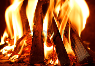 firewood burning in fire