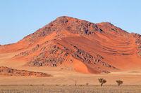 Rugged dune landscape