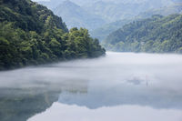 cast fishing net on the foggy river