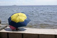 Woman and umbrella