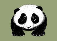 Hand-drawn EPS 8 Vector illustration of cute Panda 5