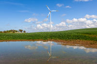 Wind turbines for electric power production and reflection in the pond