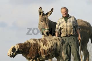 Unterwegs mit Schaf und Esel