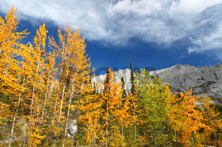 Autumn in the Canadian Rockies