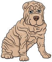 Shar Pei purebred dog cartoon illustration