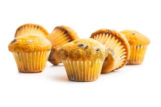 Vanilla muffins. Sweet cupcakes.
