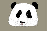 Hand-drawn EPS 8 Vector illustration of Panda with tongue out 2