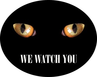 feline eyes in darkness and inscription we watch you. Warning sign