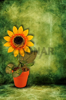 artificial sunflower on dark green background