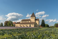 St. Georg church on Reichenau Island with cabbage field and flower meadow, Lake Constance, Germany