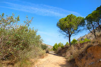Castell de Montgri hiking trail