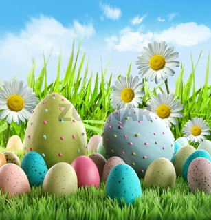 Colorful Easter eggs with daisies