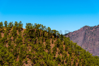 National Park of Caldera de Taburiente. Old Volcano Crater with Canarian Pine Trees Forest