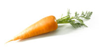 Short carrot isolated on white