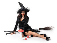 Halloween witch with broom fly agarics