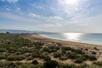 beach landscape in the Nature Park La Brena near Barbate in Andalusia