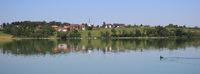 Dream like summer morning at the shore of Lake Pfaffikon, Zurich Canton.