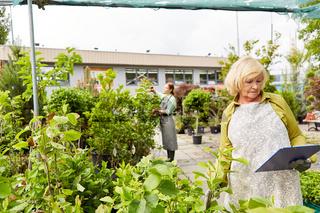 Gärtnerin kontrolliert Wachstum der Pflanzen