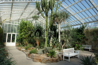 Kakteenhaus, greenhouse with cactuses