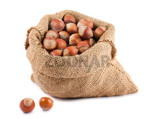 Hazelnuts in canvas sack