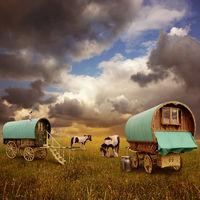 Gypsy Wagons, Caravans