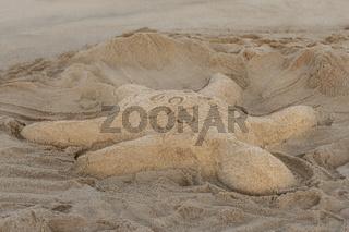 Sandy sculpture of a turtle